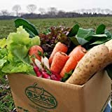 東北牧場 安心野菜8種セット