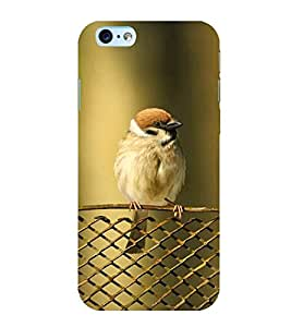 KOOKABURRA BIRD A BEAUTIFUL CREATION OF NATURE 3D Hard Polycarbonate Designer Back Case Cover for Apple iPhone 6S