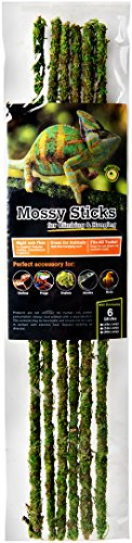 Galapagos (05320) Mossy Terrarium Sticks (6 Pack), 18