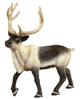 Safari Ltd Wild Safari North American Wildlife Reindeer