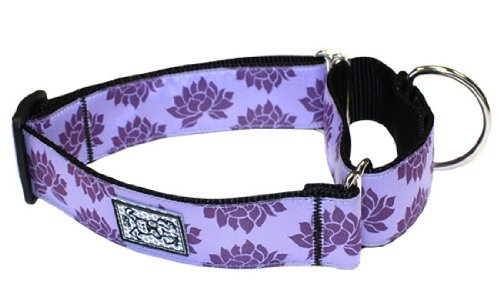 RC Pet Products 1-1/2-Inch All Webbing Martingale Dog Collar, Medium, Nirvana