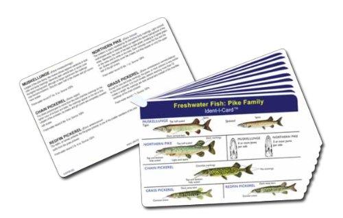 Fish Ident-I-Cards - Set of 9 Freshwater Fish Identification Cards (Fish Identification compare prices)