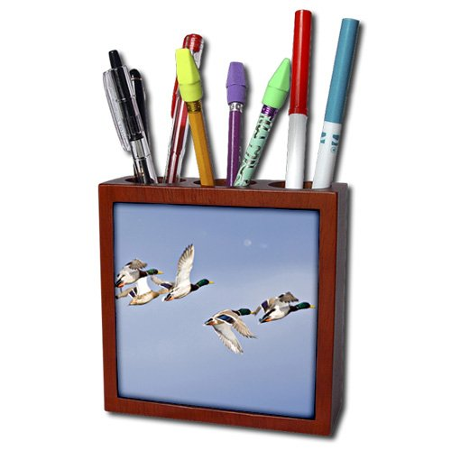 3dRose ph_180641_1 Image of Retro Red and Blue Corvettes in a Repeat Pattern-Tile Pen Holder, 5-Inch