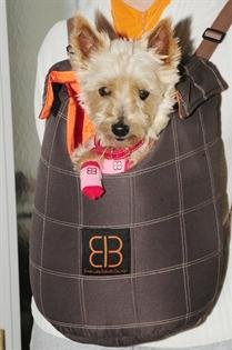 Soft Pet Carriers front-1060559