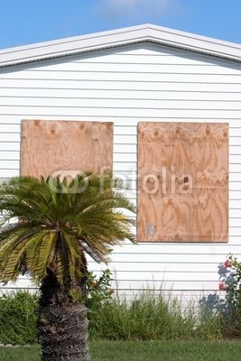 Wallmonkeys Peel and Stick Wall Decals - Hurricane Protection Plywood Panels5 - 24