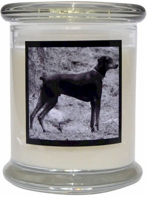 Aroma Paws 356 Breed Candle 12 Oz. Jar - Doberman Pinscher
