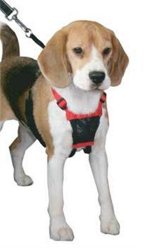 Sporn Nylon Non Pulling Dog Harness, Medium, Black