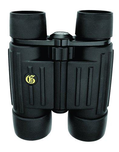 Galileo G-1042Pc 10X42 Phase Coated Binoculars W/ Bak-4 Prisms