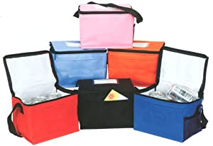 Insulated Lunch Cooler Bag by Ensign Peak