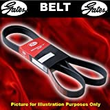 Gates 6PK2193 V-Ribbed Belts