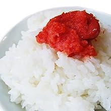 鳥取県産 白米 コシヒカリ極太米(10kg)平成23年度産[送料無料][常温]
