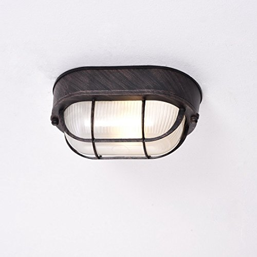 truelite-industrial-vintage-mini-ellipse-indoor-ceiling-fixture-metal-caged-with-glass-exterior-wall