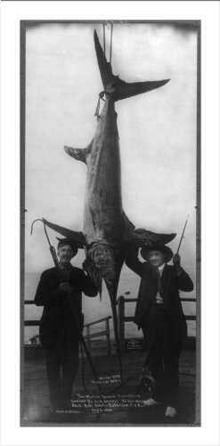 Historic Print (L): [H.W. Adams of Vermajo Park, N.M. The World's record swordfish caught by Adams and Capt.