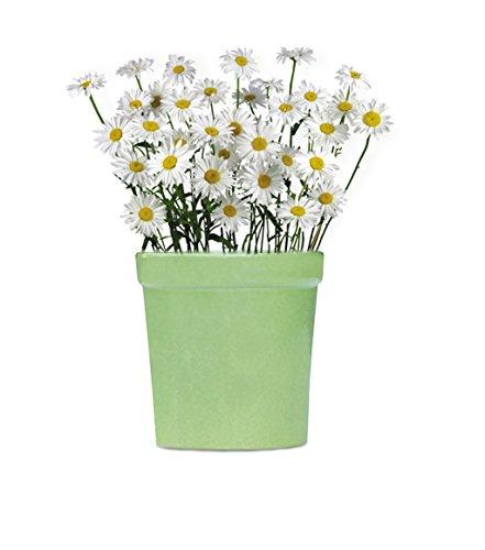 liquidacion-de-almacen-souvnear-jardinera-maceta-jardinera-con-un-agujero-91-cm-hierba-plantador-flo
