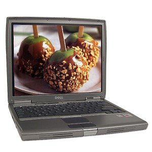 Dell Latitude D600 Pentium M 1.4GHz WIFI 256MB 40GB DVD 14.1-Inch XP Pro with Restore Cd, bonus 512mb Hurry Drive