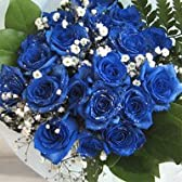 青いバラ 神秘的なブルーローズ プラチナの輝き 20本&カスミ草、グリーン付き バラの花束(生花) 【お祝い・記念日・誕生日・フラワーギフト・バラ】