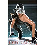 (22x34) Lady Gaga (The Fame, Pool) Music Poster Print