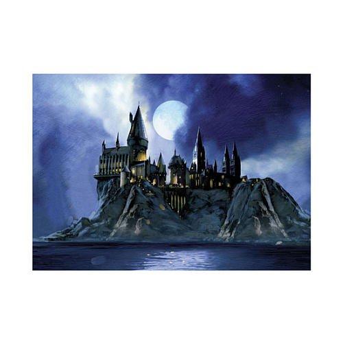 4108WgteCcL Buy  Neca Toys Puzzles   Harry Potter   HOGWARTS CASTLE (1000 pieces)