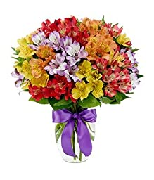 Flowers - Rainbow Peruvian Lily Bouquet
