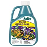Insect Killing Soap, Concentrate, 16 Ozs