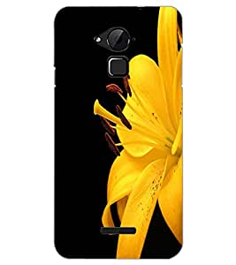 COOLPAD NOTE 3 FLOWER Back Cover by PRINTSWAG