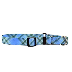 Yellow Dog Design Martingale Collar, Medium, Blue Kilt