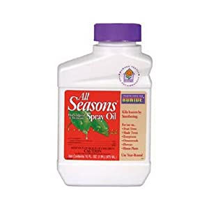 All Seasons 210 Horticultural Spray Oil Concentrate  - 16 oz