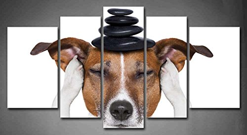5 Panel Wall Art Black And White Dog Meditation With Hot Stones On Top Painting The Picture Print On Canvas Animal Pictures For Home Decor Decoration Gift Piece (Stretched By Wooden Frame,Ready To Hang)