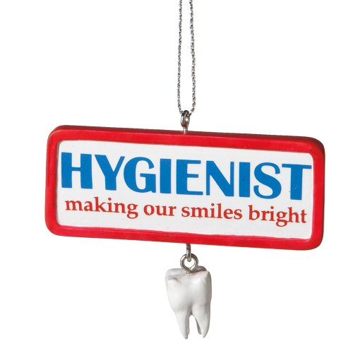 Midwest Cbk Dental Hygenist Christmas Ornament Mw458730