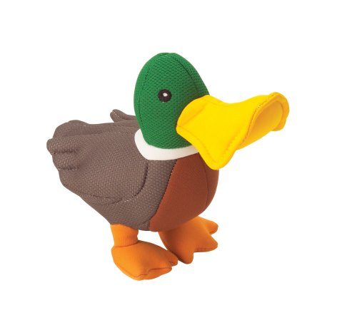 Coleman Mallard Duck Water Sport Pet Toy