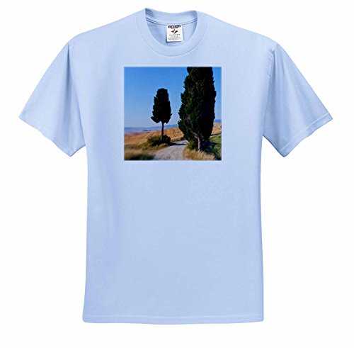 danita-delimont-italy-winding-road-val-d-orica-tuscany-italy-t-shirts-adult-light-blue-t-shirt-large