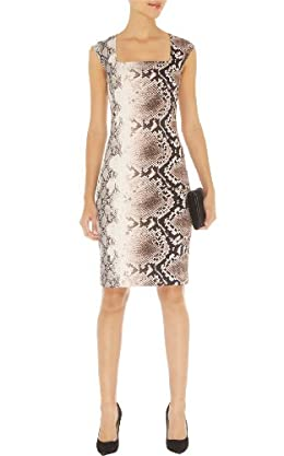 Fitted Snake Print Dress