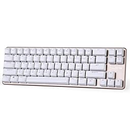 Qisan Mechanical Keyboard Gaming Keyboard Blue Switch 68-Keys Mini Design (60%) Gaming Wired Keyboard Come with Free Data OTG Cable White Golden Magicforce