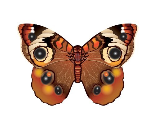 "WindNSun Microkite Mini Mylar Butterfly 4.7"" Buckeye Kite - 1"