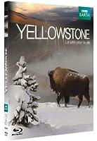 Yellowstone, la lutte pour la vie [Blu-ray]