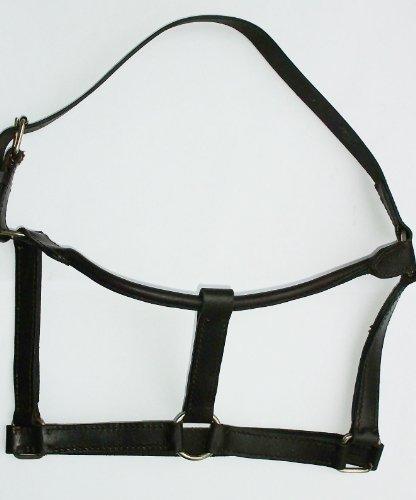 Lederhalfter Gr. F/S, dunkelbraun | Halfter aus