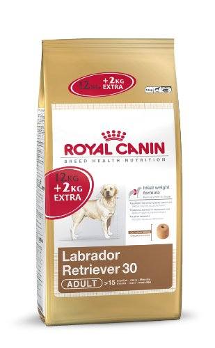 Royal Canin Labrador Dry Mix 12 kg + 2 kg Extra Free (Total 14 kg)