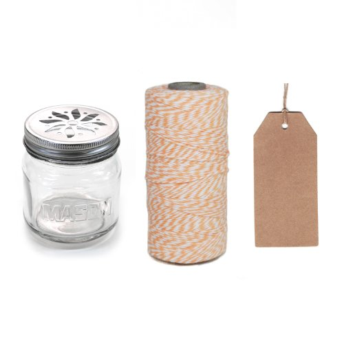 Dress My Cupcake 12-Pack Favor Kit, Includes Vintage Glass Mason Jar Sippers And Twine/Kraft Gift Tag, Coral Peach front-513601