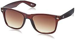 Buzz Wayfarer Unisex Sunglasses (1084-103|58|Brown lens)