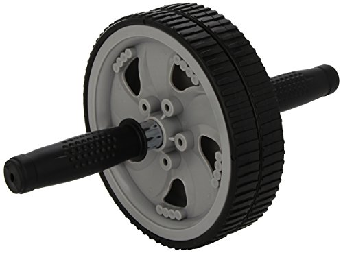 everlast-duowheel-ruota-allenamento-grigio