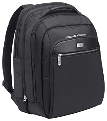 Case Logic 16-Inch Security-Friendly Laptop Backpack (CLBS-116)