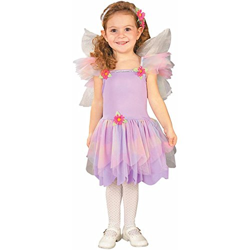 Toddler Butterfly Fairy Costume (Size: 2-4T)