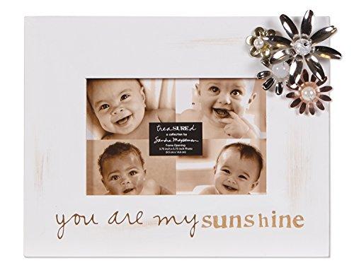 C.R. Gibson Treasured Frame by Sandra Magsamen, 4 by 6-Inch, Sunshine