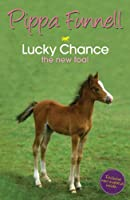 Tilly's Pony Tails 5: Lucky Chance: the new foal