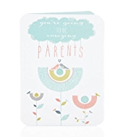 Birds Going to Be Parents Baby Card