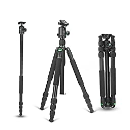 ZOMEI Z988 Professional Magnalium Complete Travel Tripod with Bubble Level and 360 Degree Rotation Ball Head for Canon Nikon Sony DSLR Camera,Camcorders(Green)