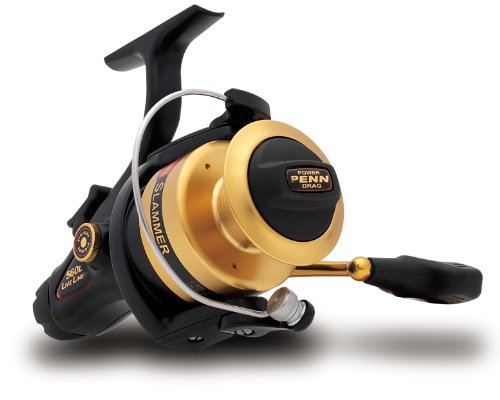 Penn Gold Label Series Slammer Live Liner Spinning