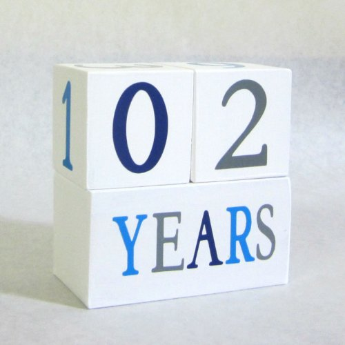 Baby Age Blocks: Shower Gift, Photo Prop & Nursery Decoration - Blue Jay Age Blocks front-141630