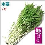 【水菜(京菜) 5把】無農薬栽培。【送料込】
