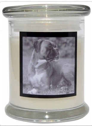 Aroma Paws 319 Breed Candle 12 Oz. Jar - Boxer